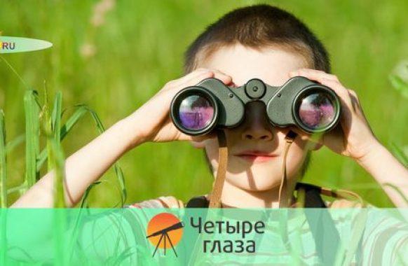 Четыре глаза
