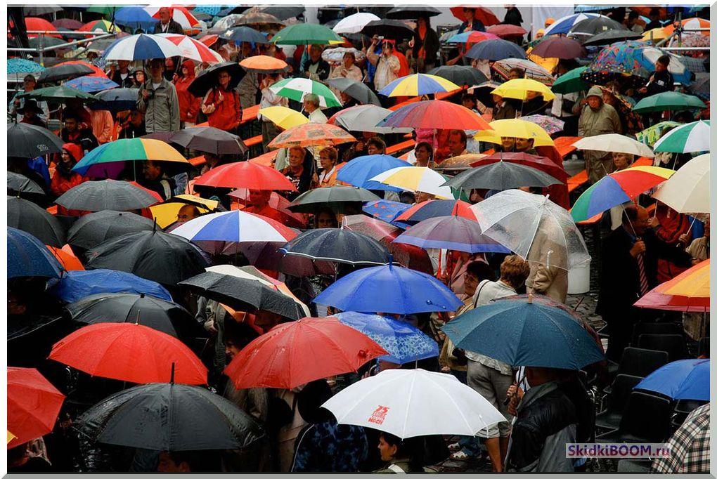 Выбираем себе зонтик