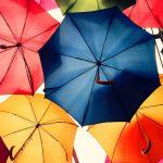 Выбираем себе зонтик.