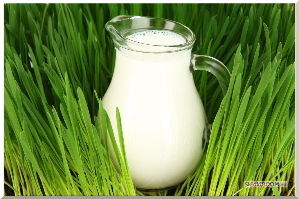 Молоко избавит от бессонницы