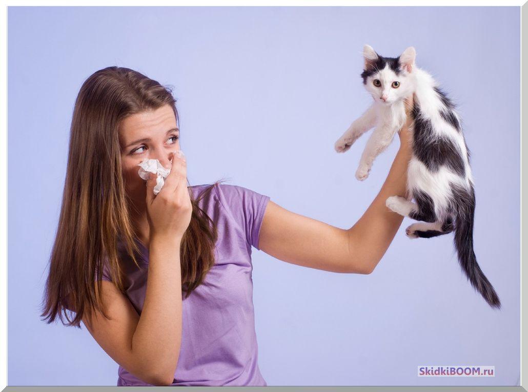 как избавиться от неприятного запаха в жилом помещении - животные