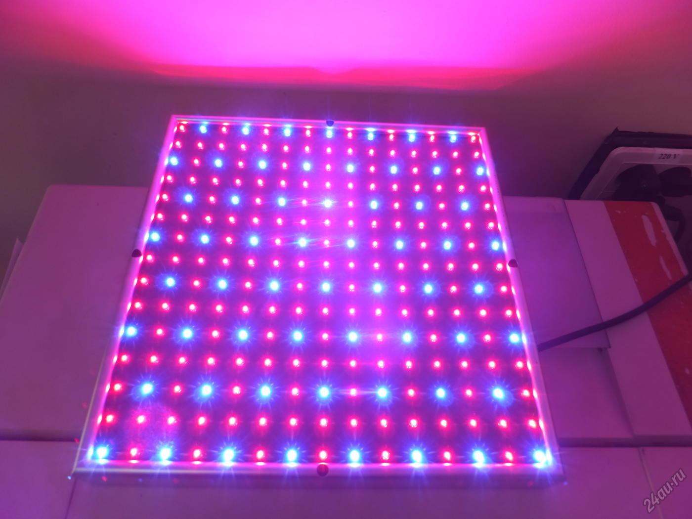 Как сделать освещение для рассады в домашних условиях?