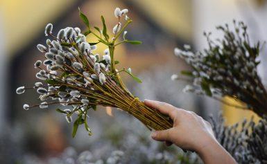 Вербное воскресенье традиции и обычаи