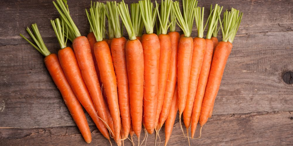 Чем полезна морковь для здоровья человека?